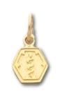 Hexagon Medical ID Pendant in 10K, 14K Gold or Silver - 9mm
