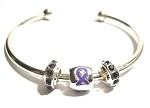 Epilepsy Awareness Silver Floating Crystal Charm Bangle Bracelet