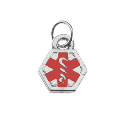 Stainless Steel Double Sided Medical Alert Charm