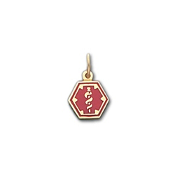 Hexagon Medical ID Pendant in 10K, 14K Gold or Silver - 16mm