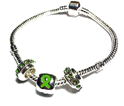 Traumatic Brain Injury Awareness Silver Dangling Charms Bracelet